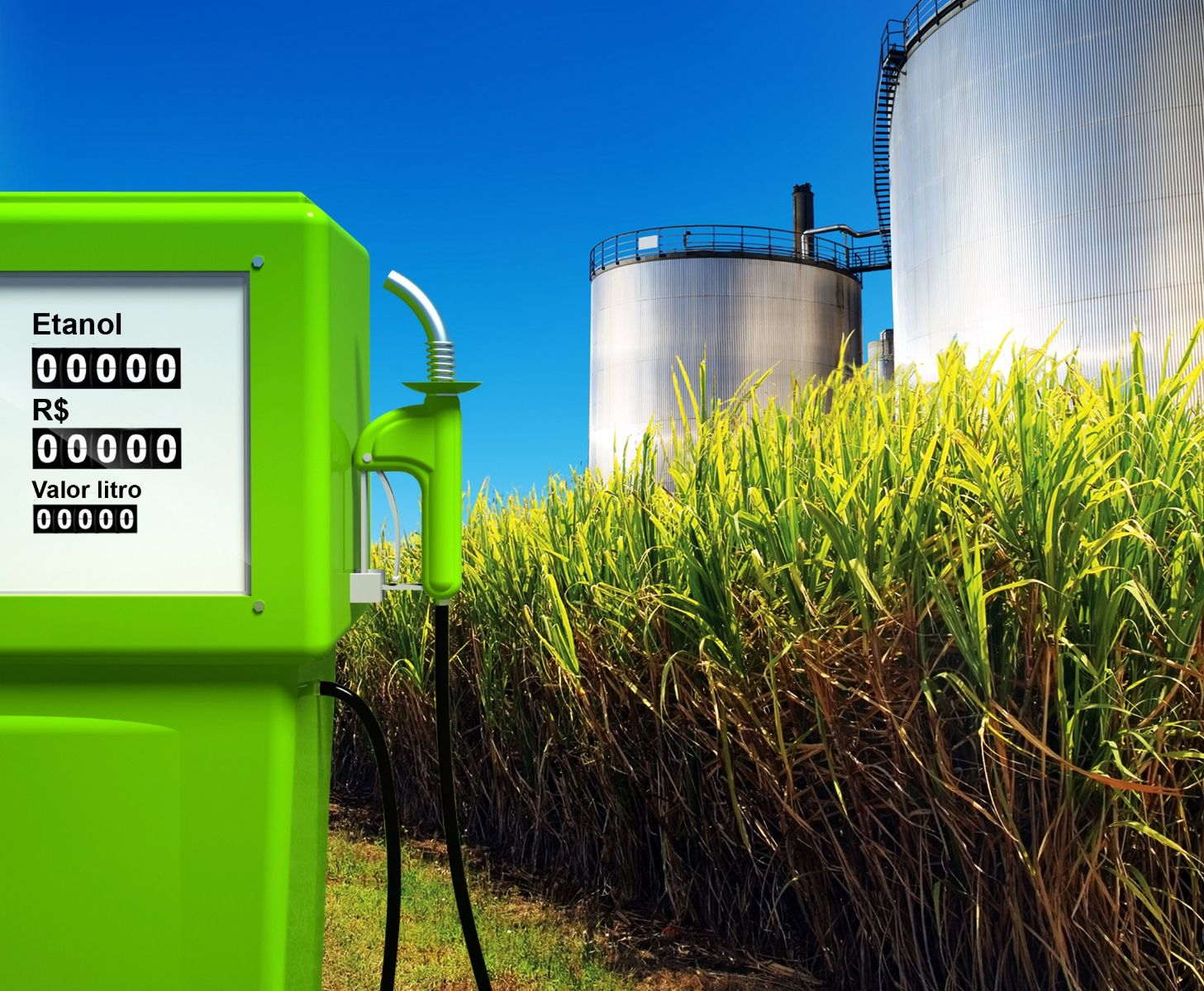 Biofuels: From boom to bust