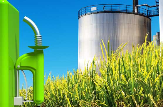 brazils bioethanol initiative With brazilian ethanol producers through this initiative, sekab aims to supply verified sustainable ethanol from the sao paulo region of brazil to the swedish market.